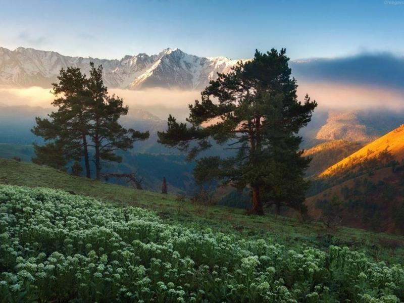 в горах Пятигорска